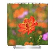 Orange Painted Landscape Shower Curtain