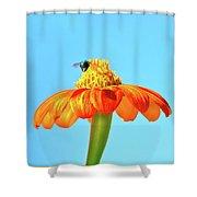Orange Pop Flower Cafe Shower Curtain