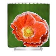 Orange Poppy 2 Shower Curtain