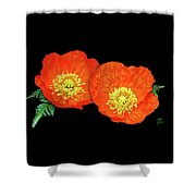 Orange Poppy Collage Cutout Shower Curtain