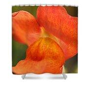 Orange Pout 2 Shower Curtain