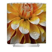 Orange Rain Shower Curtain