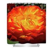 Orange Red Rose Flower Art Prints Giclee Baslee Troutman Shower Curtain
