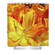 Orange Rhodies Flowers Art Rhododendron Baslee Troutman Shower Curtain