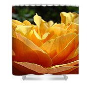 Orange Rose Art Prints Baslee Troutman Shower Curtain