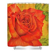 Orange Rose Blossom Shower Curtain