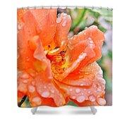 Orange Rose Raindrops Shower Curtain
