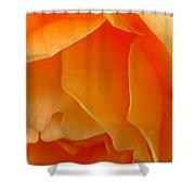 Orange Rose Side View Shower Curtain