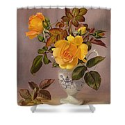 Orange Roses In A Blue And White Jug Shower Curtain