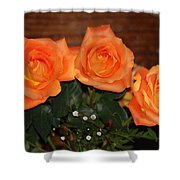 Orange Roses With Babysbreath Shower Curtain