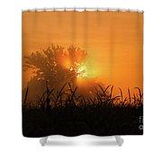 Orange Sky Rising Shower Curtain