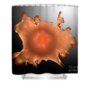 Orange Something.b. Shower Curtain