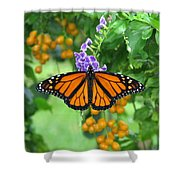 Orange Splendour Shower Curtain