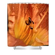 Orange Streaming Shower Curtain