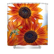 Orange Sunflower 2 Shower Curtain