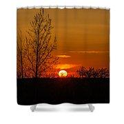 Orange Sunset Through The Trees Shower Curtain