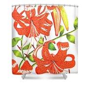 Orange Tiger Lilies Shower Curtain