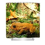 Orange Toad Shower Curtain