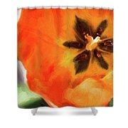 Orange Tulip Bloom Shower Curtain