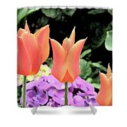 Orange Tulip Painting  Shower Curtain