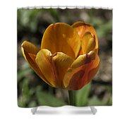 Orange Tulip Squared Shower Curtain