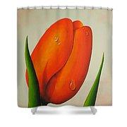 Orange Tulip Still Life Shower Curtain