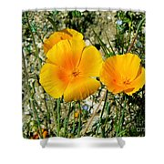 Orange Wildflowers Shower Curtain