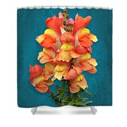 Orange Yellow Snapdragon Flowers Shower Curtain