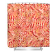 Orange Zebra Print Shower Curtain