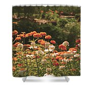 Orangeade Shower Curtain