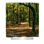 Orangedale Path Shower Curtain