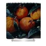 Oranges Shower Curtain