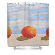 Oranges On A Ledge Shower Curtain