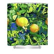 Oranges On Vine IIi Shower Curtain