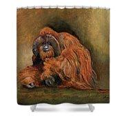 Orangutan Monkey Shower Curtain