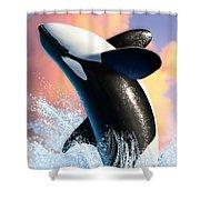 Orca 1 Shower Curtain