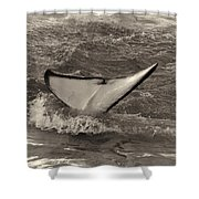 Orca 2 Shower Curtain