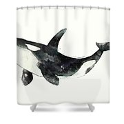 Orca From Arctic And Antarctic Chart Shower Curtain by Amy Hamilton