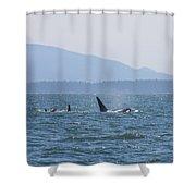 Orcas Shower Curtain