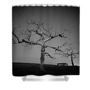 Orchard Bw Shower Curtain