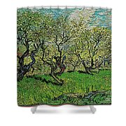 Orchard In Blossom Shower Curtain