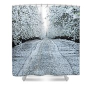 Orchard In White Shower Curtain