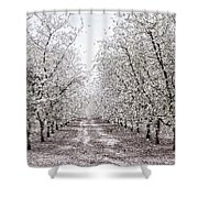 Orchard Lane Shower Curtain