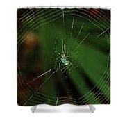 Orchard Orb Shower Curtain