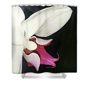 Orchid-2 Shower Curtain