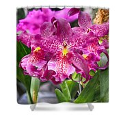 Orchid Aliceara Marfitch Shower Curtain