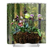 Orchid Basket Shower Curtain