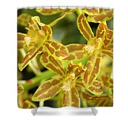 Orchid Drama Canvas Shower Curtain