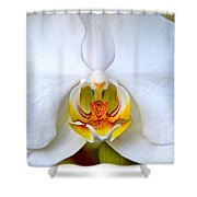 Orchid Fire Shower Curtain