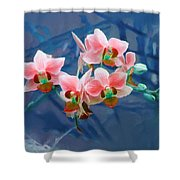 Orchid Flowers 8 Shower Curtain